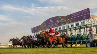 Minister Crowns Winners of Qatar International Derby Festival