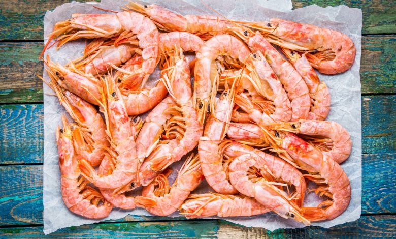 Ministry Announce First Production of Water Research Center of Shrimp