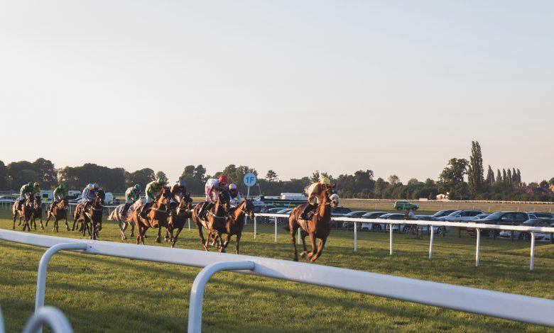 QREC to Organize Qatar Derby Festival