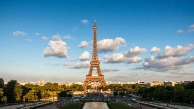Photo of Eiffel Tower steps fetch 274,000 euros at auction