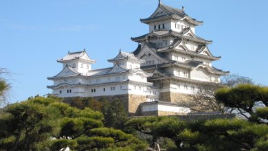 Intruder to Palace of the Japanese Emperor arrested