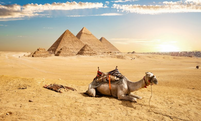 Qatar Airways resumes flights to Egypt and announces flight dates to Cairo and Alexandria