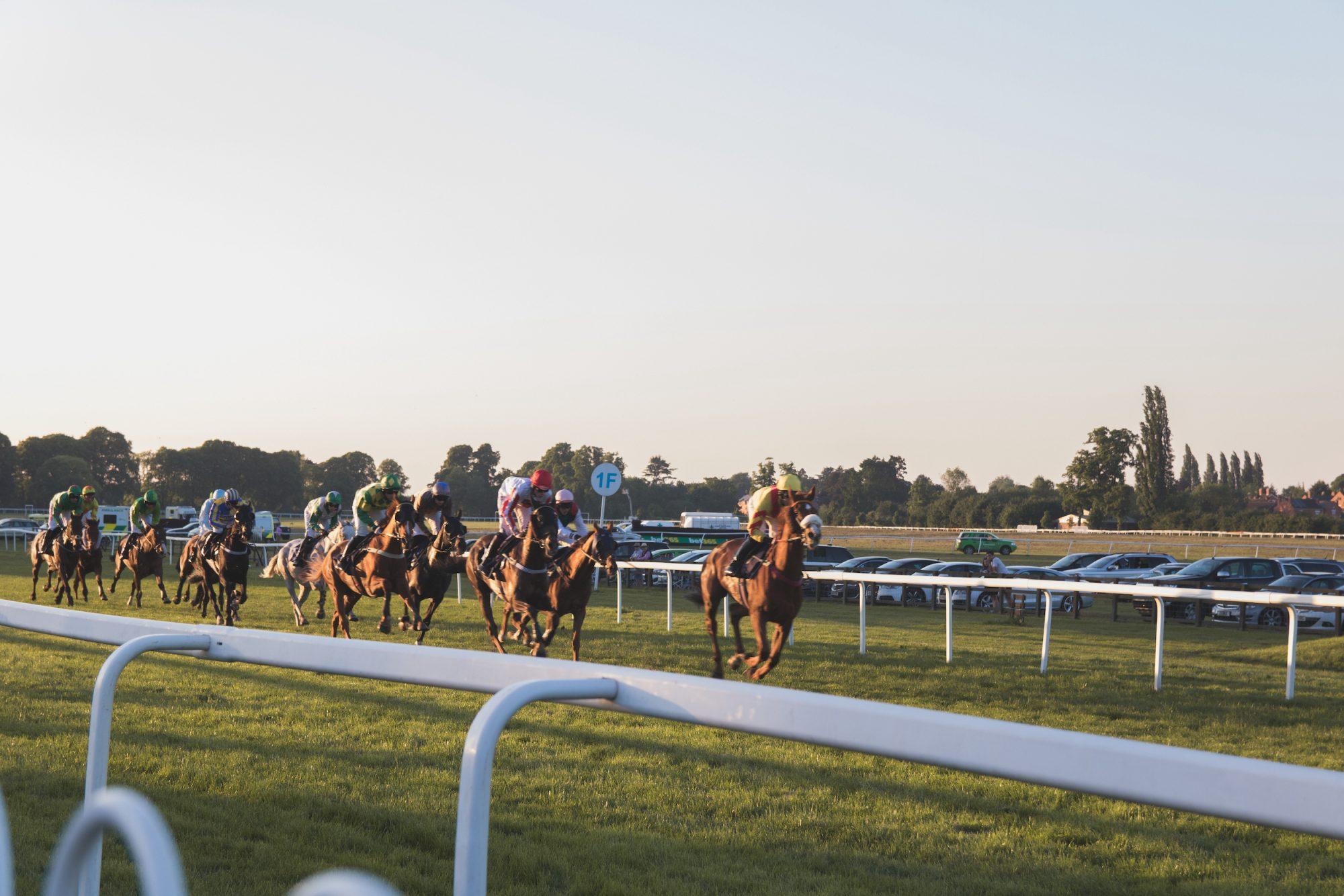 Qatari Horses Continue to Dominate in International Races