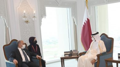 Prime Minister Meets a Number of Interior Ministers