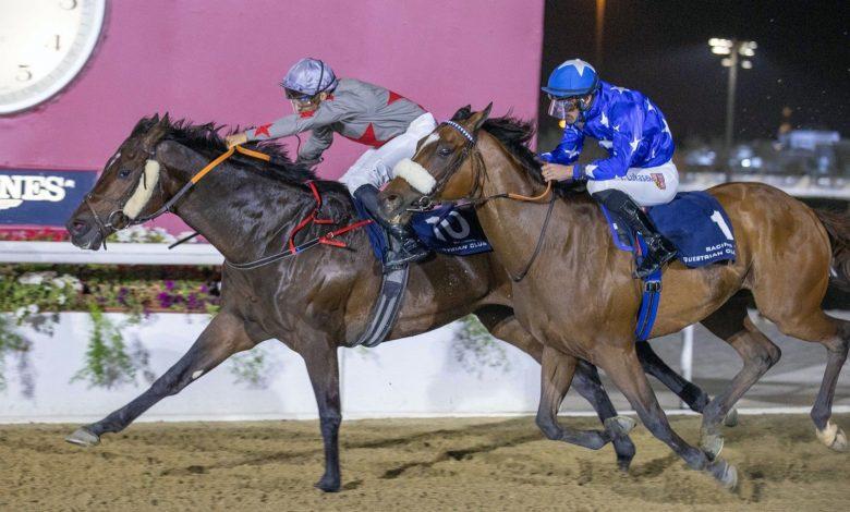 ZARANDI Shines in Mesaimeer Cup Feature Victory