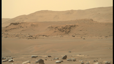 """NASA publishes a new """"stunning"""" image of the surface of Mars"""