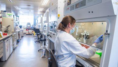 Oxford University develops an effective malaria vaccine