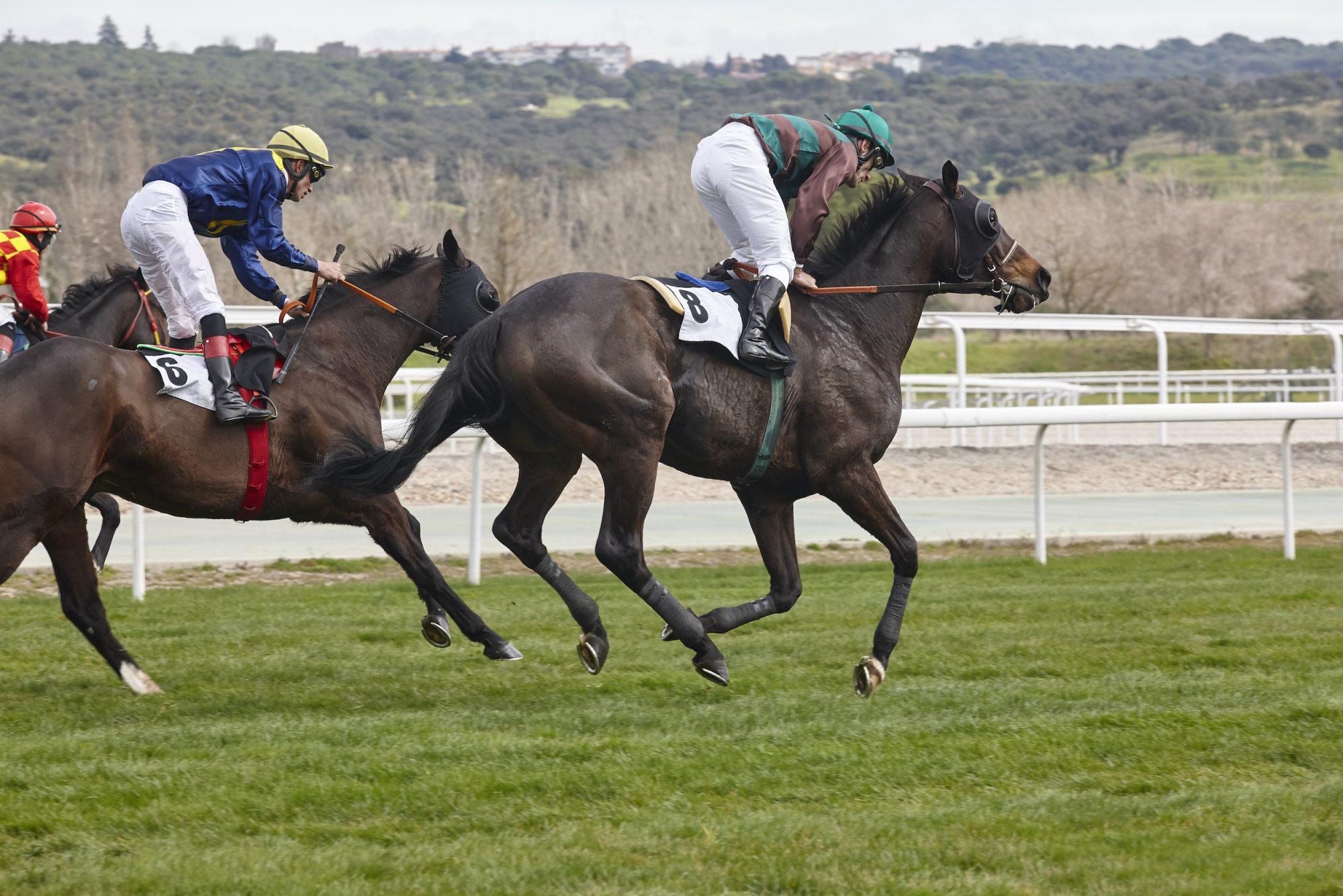 Equestrian: Qaiser Wins 2200m. Race in Prix Carrus