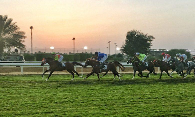 """Filly """"SAHAB"""" Dazzles Winning Qatar Prix Djebella II"""