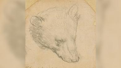 Da Vinci's 'Head of Bear' drawing seen fetching up to $16 mln