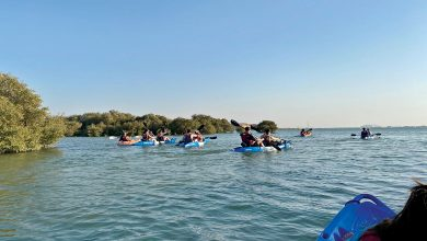 Island development stimulates domestic tourism
