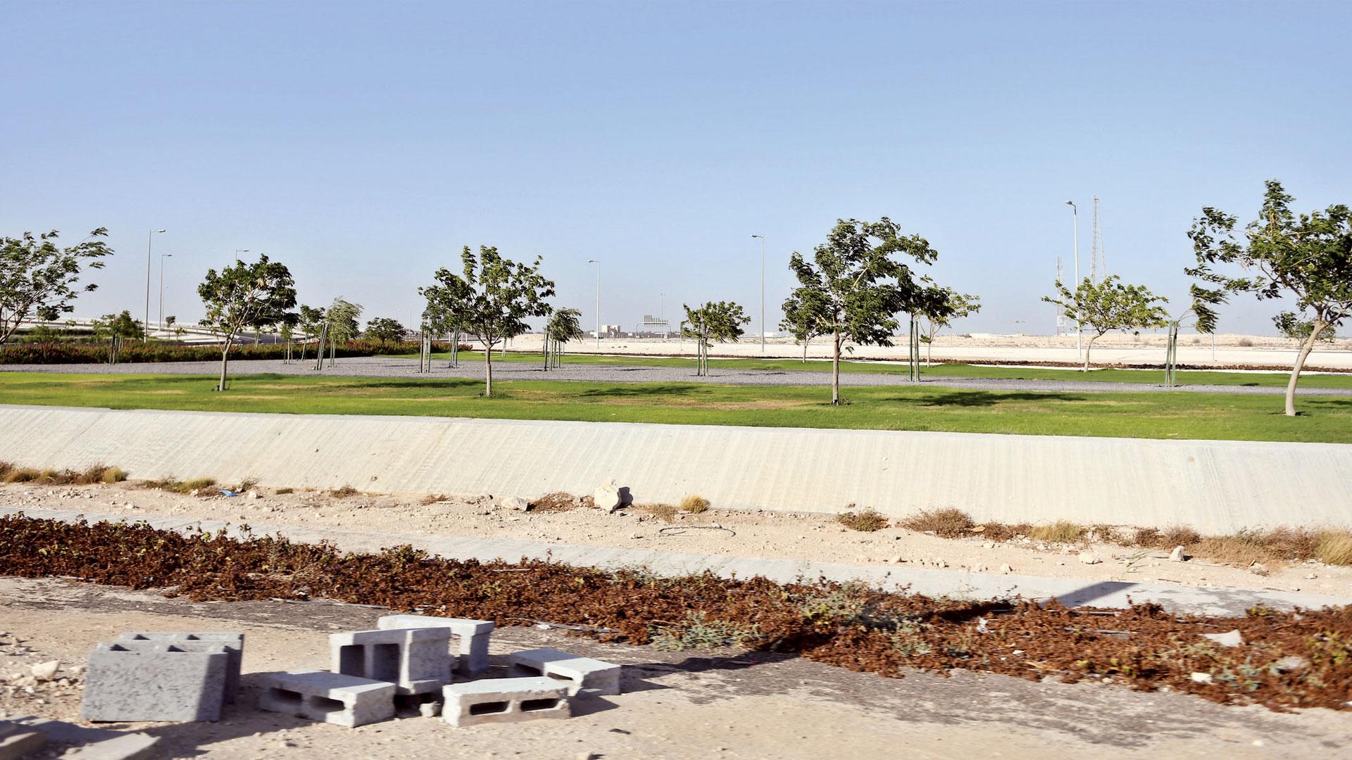 Green Belt Project Beautifies Al Shamal Road