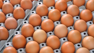 5 ways to know whether the egg is valid or rotten