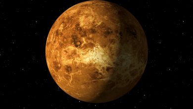An Unexpected Planetary Feature Has Just Been Found on Venus