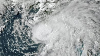 Storm Elsa Turns Into Hurricane While It Approaches Florida's Gulf Coast