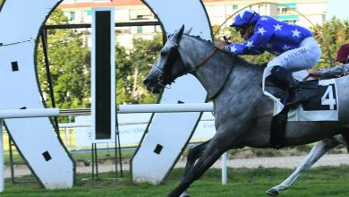 KHATEER ALKHALEDIAH Completes a Quadruple with Listed Victory in Spain