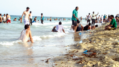 5 repeated violations in Sealine