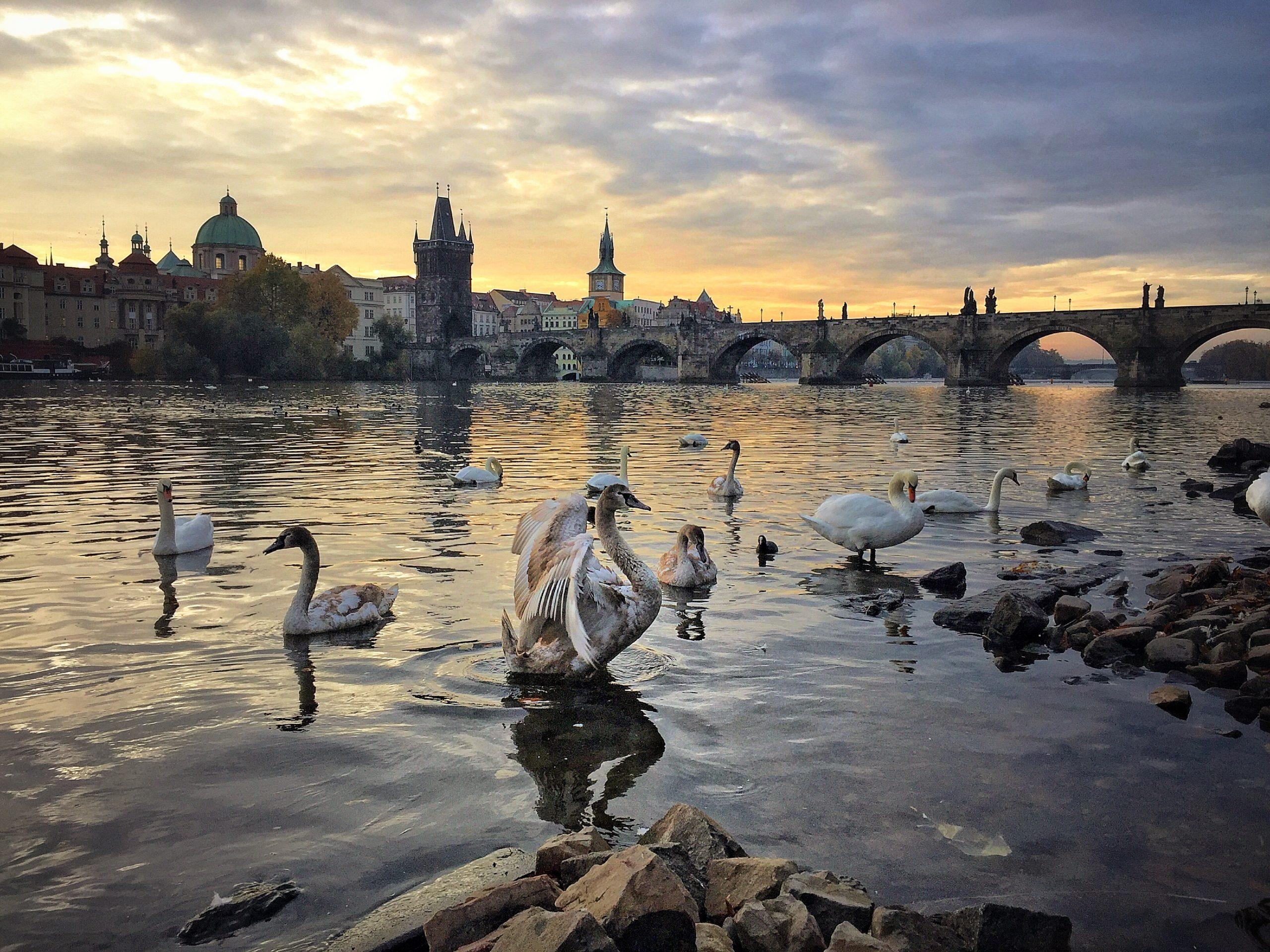 Moldova invites visitors to enjoy its hidden oasis