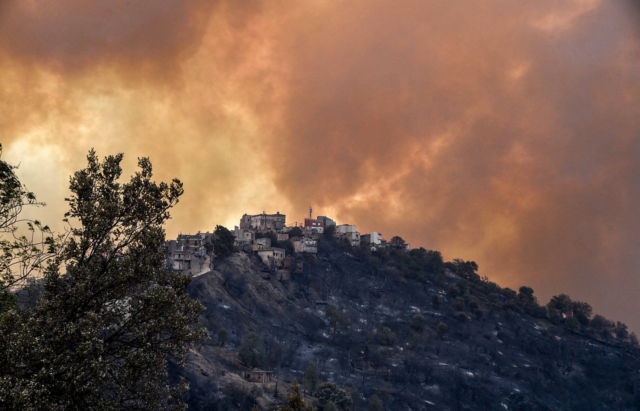 More than 40 killed in Algeria wildfires, prime minister says