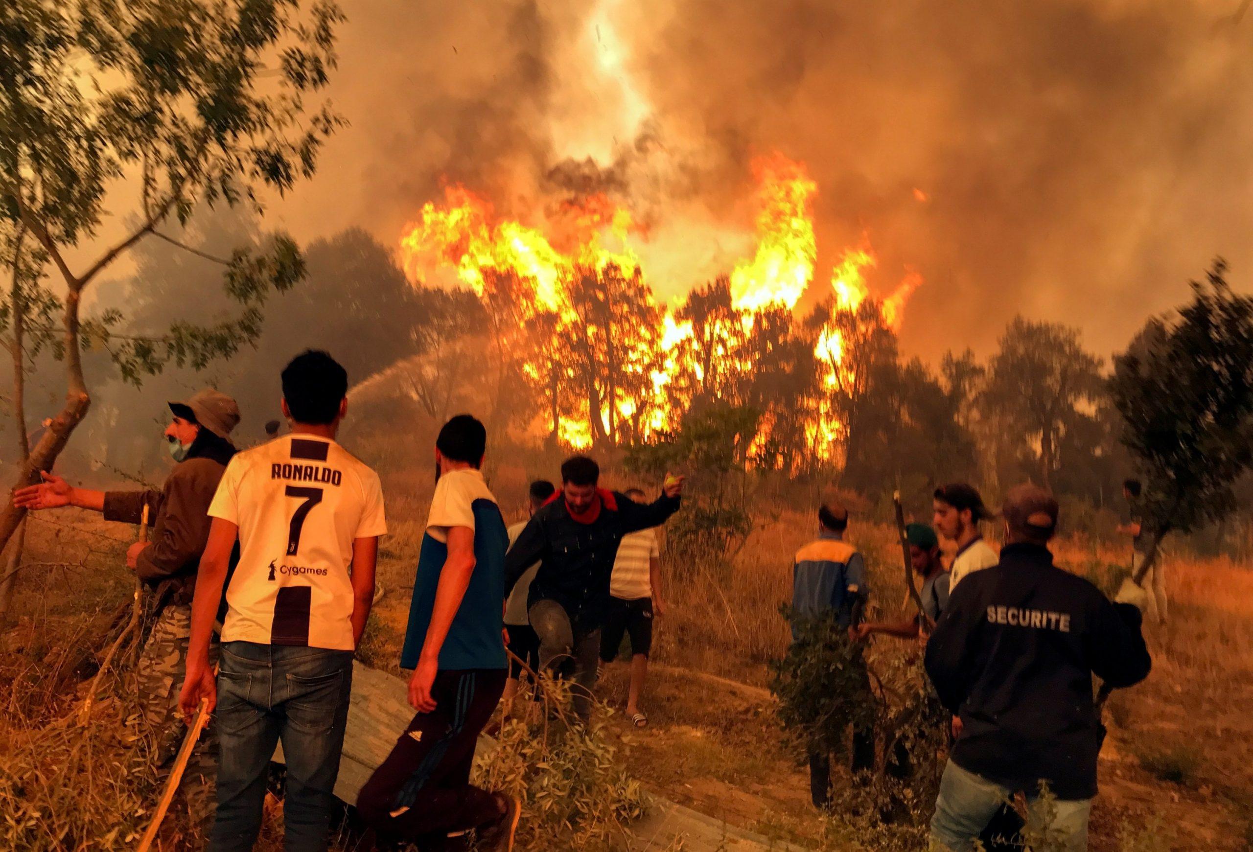 Algeria: 43 Fires in 20 Provinces Brought Under Control