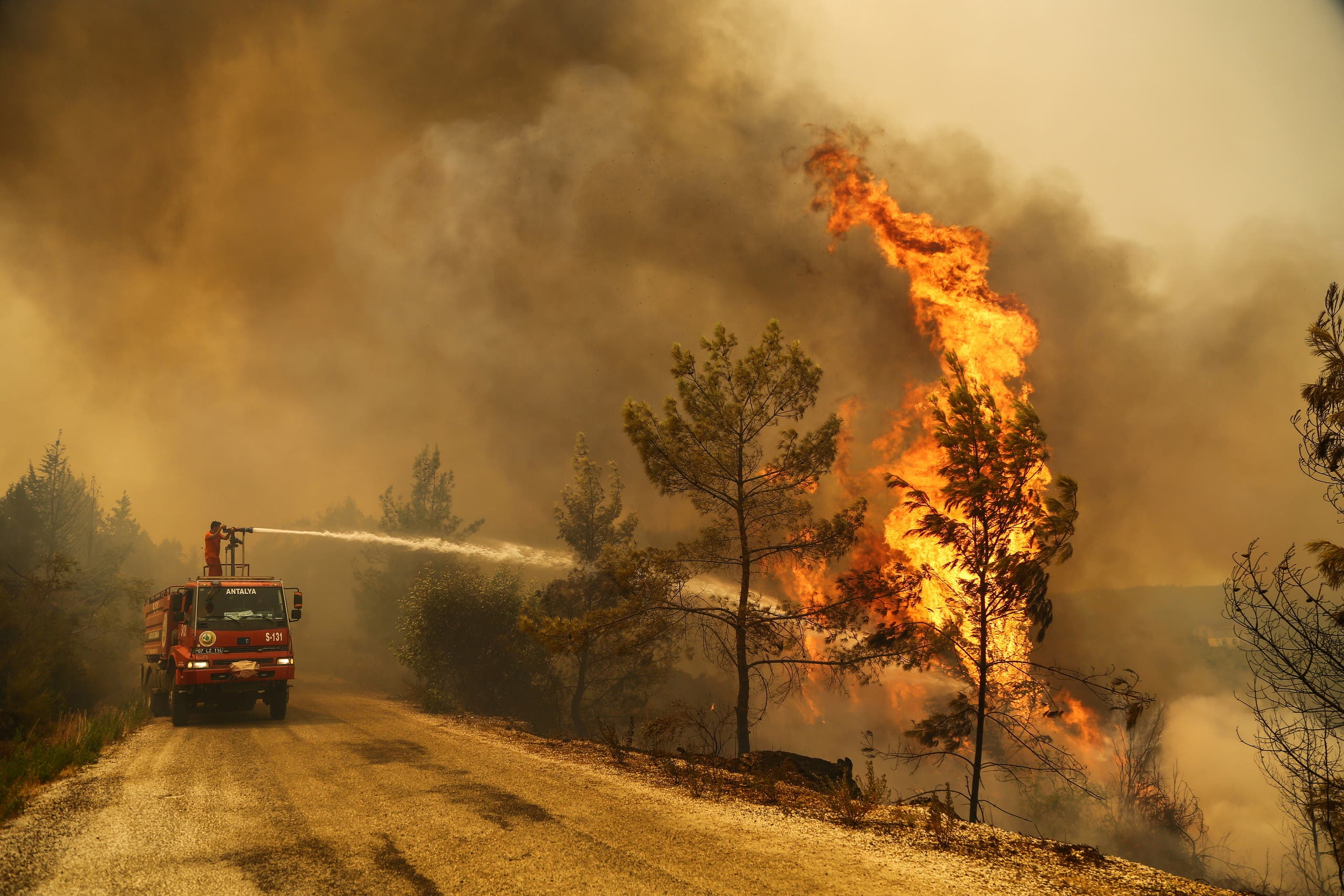 Turkish President Declares Fire-Affected Regions Disaster Areas