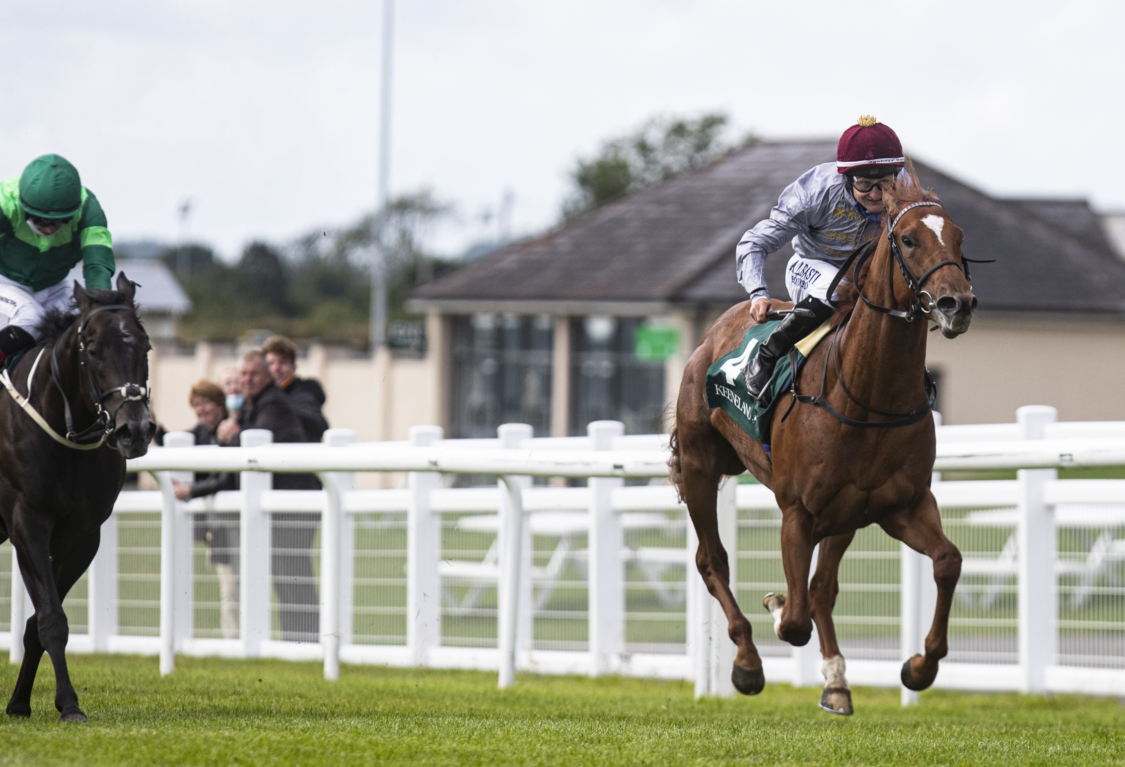 Al Shaqab Racing EBRO RIVER Shines at Highest Level with Gr1 Victory at the Curragh