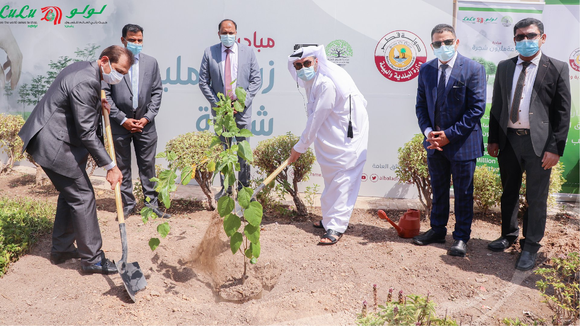 One million trees will be planted before the 2022 World Cup