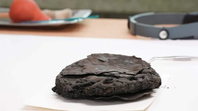 79-year-old cake baffles archaeologists in northern Germany