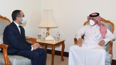 Minister of State for Foreign Affairs Meets Egyptian Ambassador