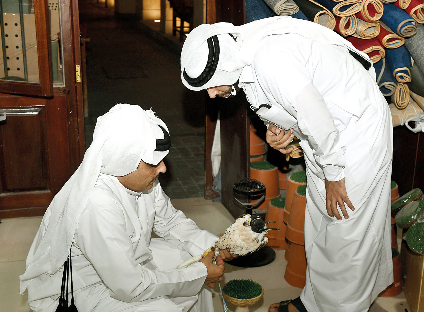Falcons from different countries of the world in Souq Waqif