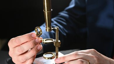 Darwin family microscope to be sold at auction